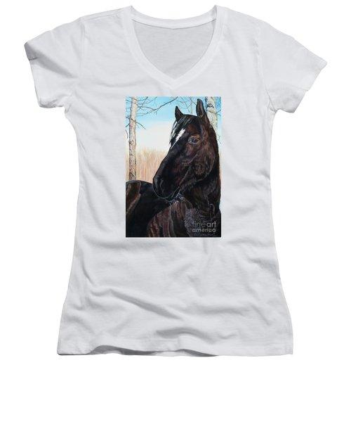 Kitty Women's V-Neck T-Shirt