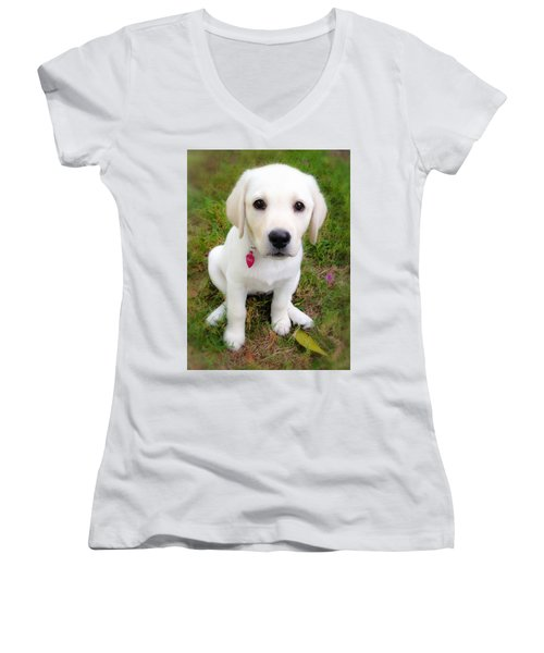 Women's V-Neck T-Shirt (Junior Cut) featuring the photograph Lab Puppy by Stephen Anderson
