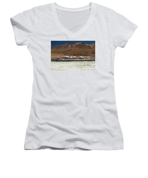 Laguna Colorada, Andes, Bolivia Women's V-Neck T-Shirt (Junior Cut) by Gabor Pozsgai