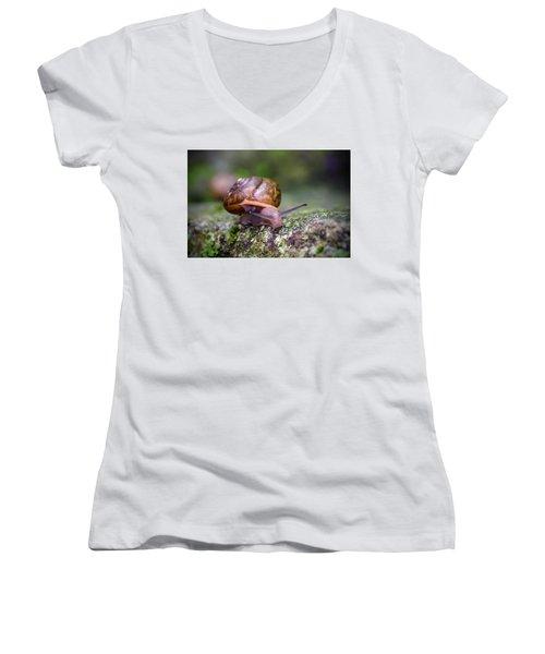 Land Snail II Women's V-Neck