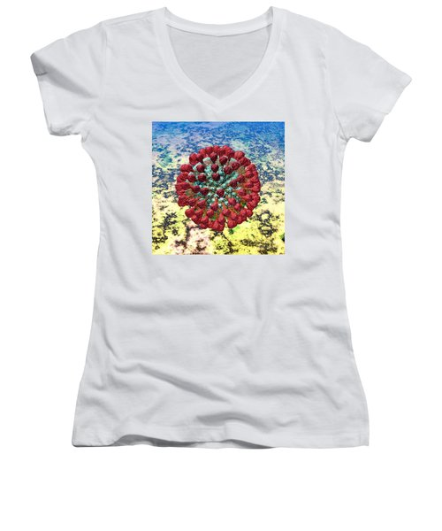 Lassa Virus Women's V-Neck T-Shirt