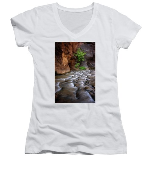 Women's V-Neck T-Shirt (Junior Cut) featuring the photograph Last Stand by Dustin LeFevre