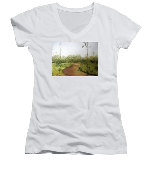 Late Summer Walk Women's V-Neck T-Shirt (Junior Cut) by Roseann Gilmore