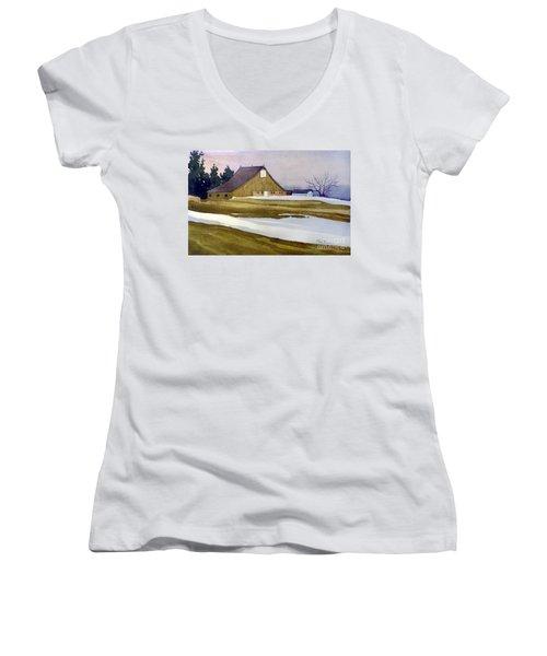 Late Winter Melt Women's V-Neck T-Shirt (Junior Cut) by Donald Maier