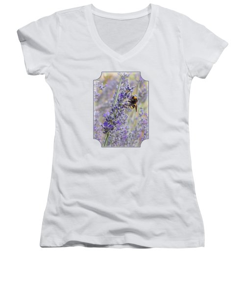 Lavender Bee Women's V-Neck T-Shirt