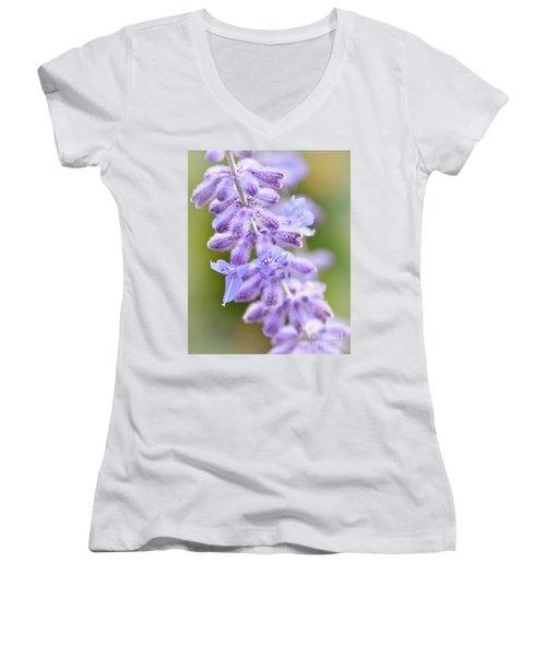 Women's V-Neck T-Shirt featuring the photograph Lavender Blooms by Kerri Farley