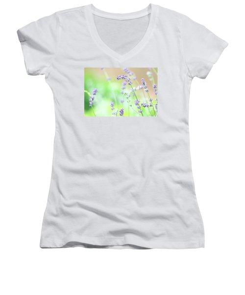 Lavender Garden Women's V-Neck T-Shirt (Junior Cut) by Trina Ansel