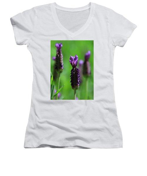 Lavender Spike Women's V-Neck