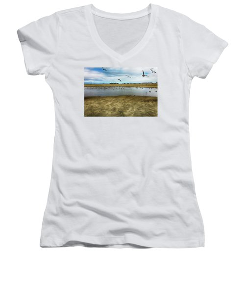 Lb Seagull Pond Women's V-Neck T-Shirt (Junior Cut) by Joseph Hollingsworth