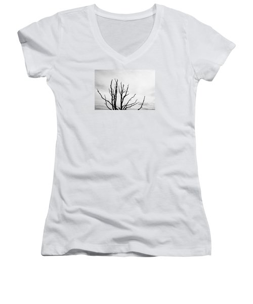 Leafless Tree Women's V-Neck (Athletic Fit)
