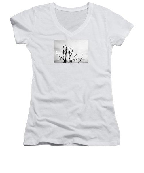 Leafless Tree Women's V-Neck T-Shirt