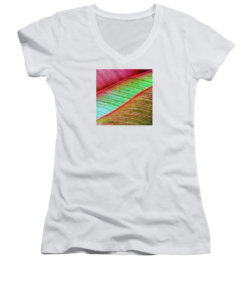 Leaves In Color  Women's V-Neck