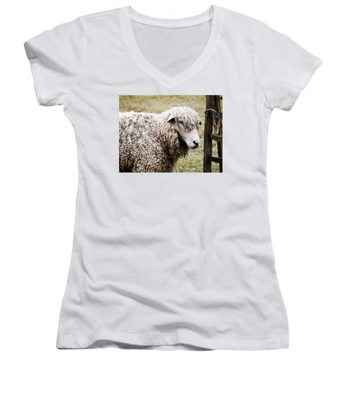 Leicester Longwool Women's V-Neck (Athletic Fit)