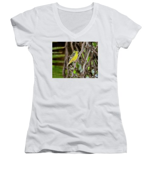 Women's V-Neck T-Shirt featuring the photograph Lesser Goldfinch H57 by Mark Myhaver