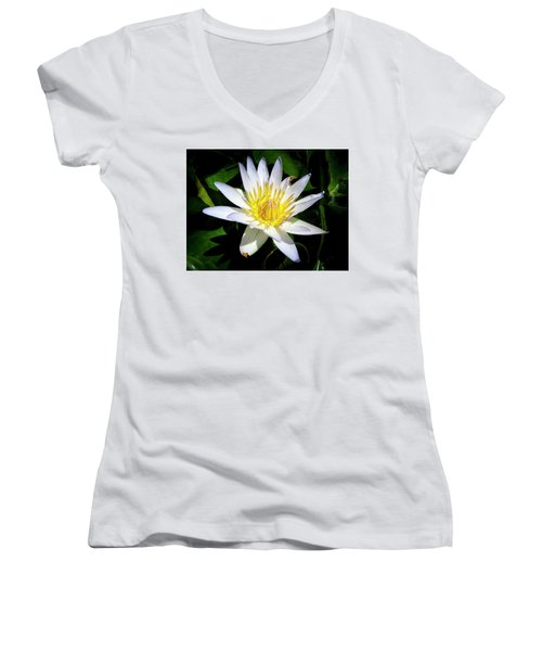 Lily Women's V-Neck T-Shirt