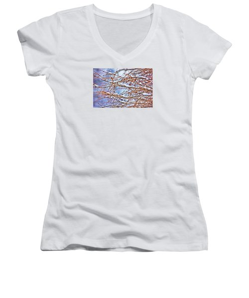 Lingering Winter Snow Women's V-Neck