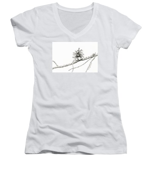 Lodgepole Pine Cone Women's V-Neck (Athletic Fit)