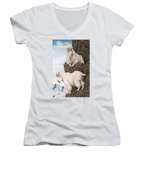 Lofty Perch Women's V-Neck T-Shirt