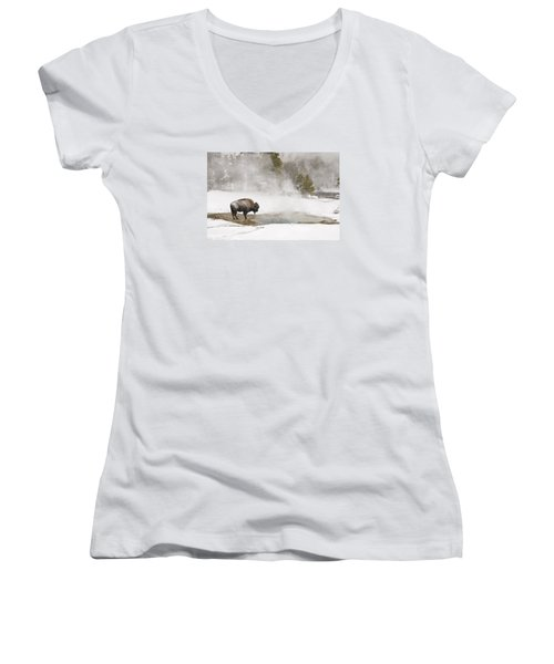 Women's V-Neck T-Shirt (Junior Cut) featuring the photograph Bison Keeping Warm by Gary Lengyel