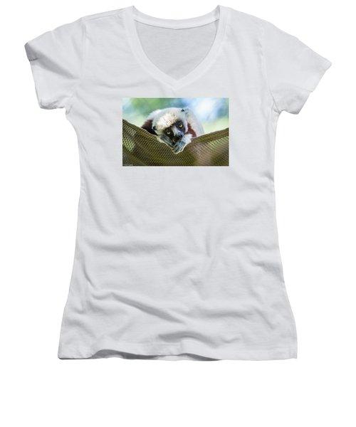 Lonely Lemur Women's V-Neck