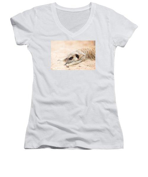 Long Day In Meerkat Village Women's V-Neck T-Shirt