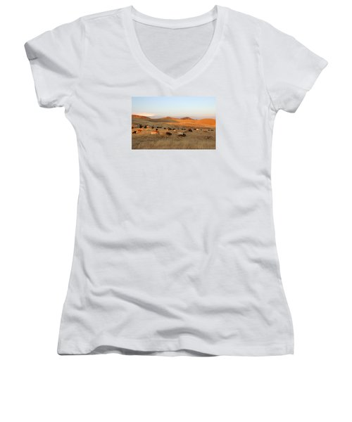 Longhorns Women's V-Neck T-Shirt (Junior Cut) by Diane Bohna