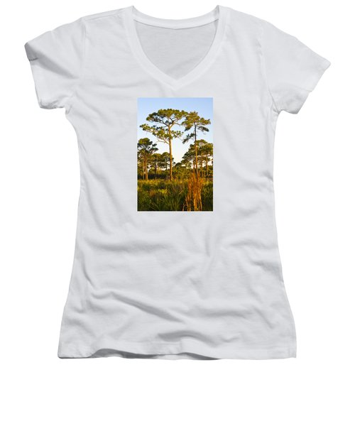 Longleaf Pines, Sunrise, Myakka State Forest Women's V-Neck (Athletic Fit)