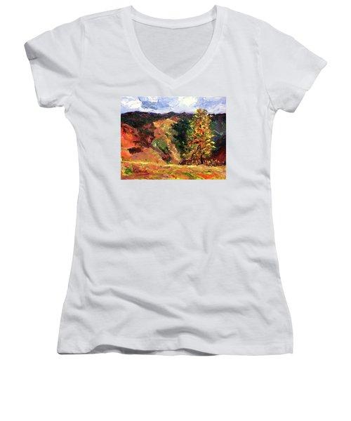 Loose Landscape Women's V-Neck T-Shirt (Junior Cut) by Janet Garcia