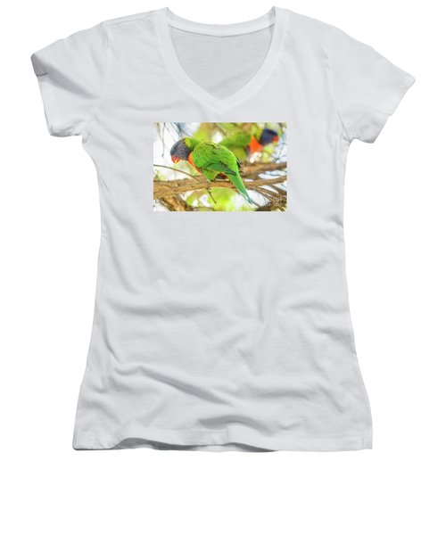 Lorrikeets 02 Women's V-Neck