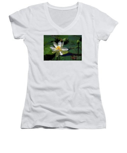 Lotus Blossom Women's V-Neck T-Shirt (Junior Cut)