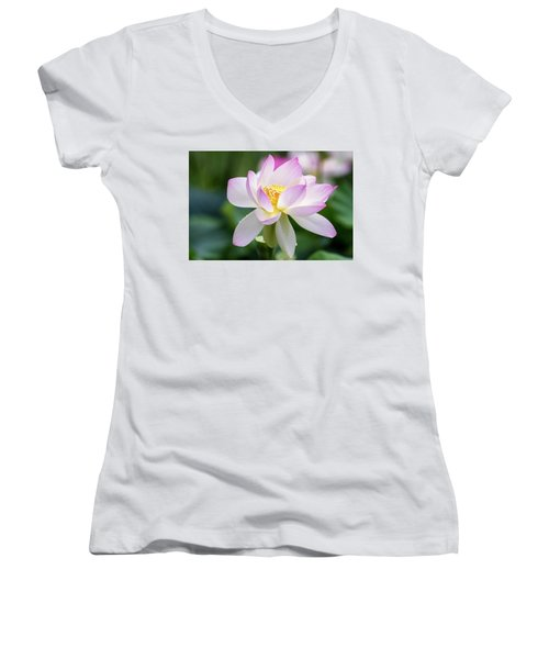 Lotus Women's V-Neck T-Shirt (Junior Cut) by Edward Kreis