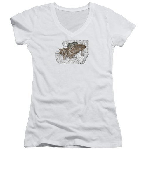 Lounge Lizards - Doberman Pinscher Puppy Print Color Tinted Women's V-Neck (Athletic Fit)