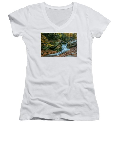 Lower Upper Creek Falls Women's V-Neck