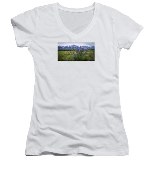 Lupine Beauty Women's V-Neck T-Shirt (Junior Cut) by Chad Dutson