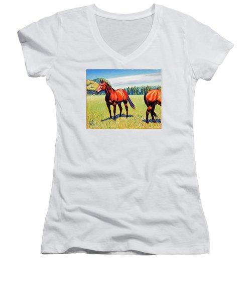 Mac And Friend Women's V-Neck T-Shirt