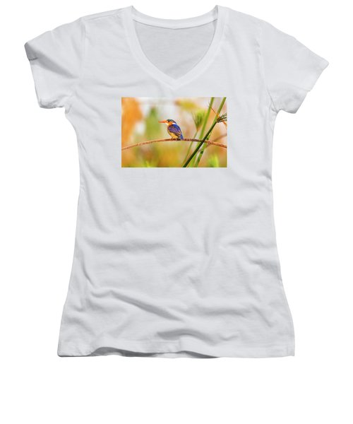 Malachite Kingfisher Hunting Women's V-Neck