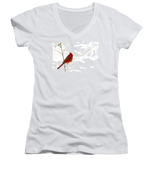 Male Cardinal Posing In The Snow Women's V-Neck T-Shirt (Junior Cut) by Randall Branham