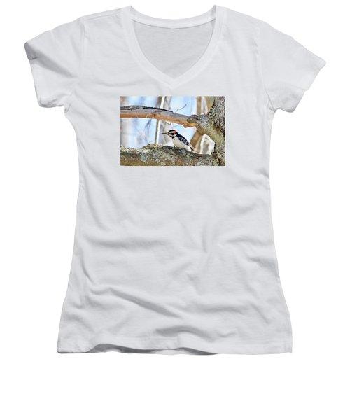 Male Downey Woodpecker 1112 Women's V-Neck T-Shirt (Junior Cut) by Michael Peychich