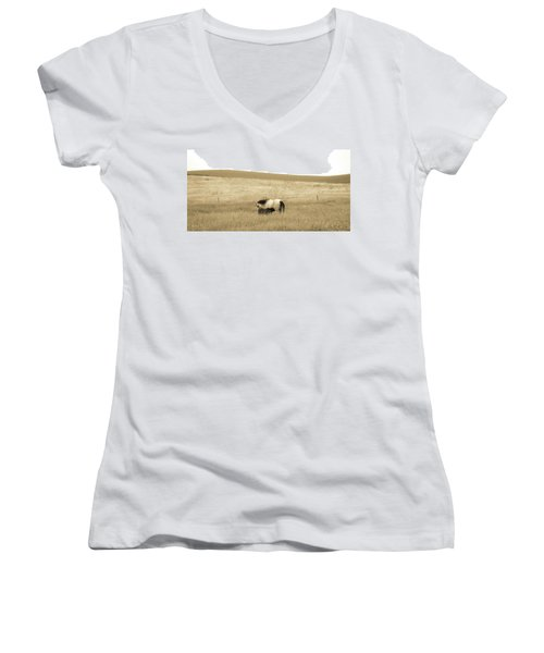 Mare And Foal  Women's V-Neck T-Shirt (Junior Cut) by Dawn Romine