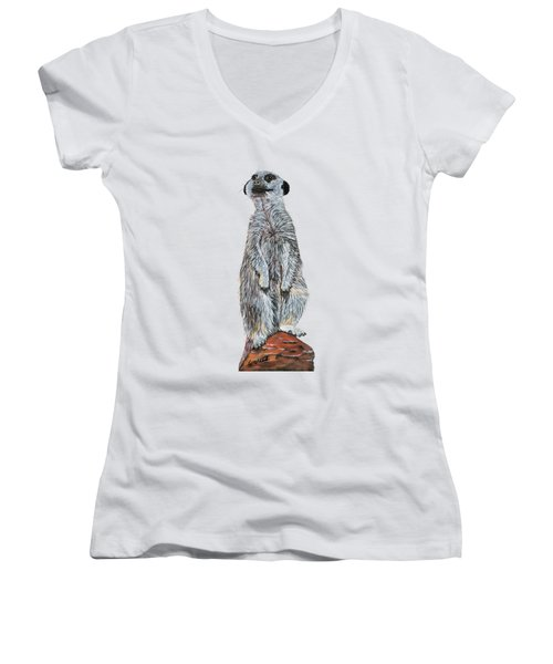 Meer Curiosity Custom Women's V-Neck T-Shirt