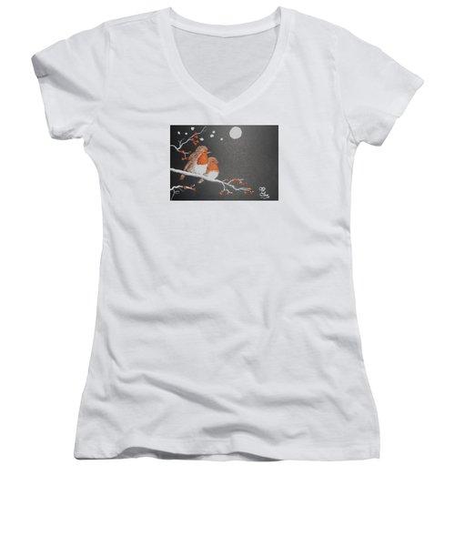 Merry Christmas Women's V-Neck T-Shirt