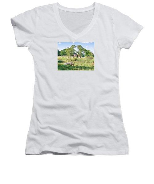 Midwest Cattle Ranch Women's V-Neck T-Shirt (Junior Cut) by Scott Hansen