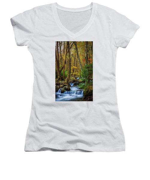 Mill Creek In Fall #1 Women's V-Neck (Athletic Fit)