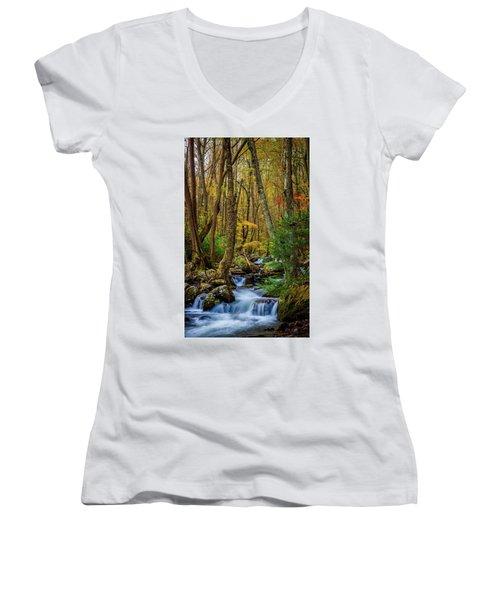 Mill Creek In Fall #1 Women's V-Neck T-Shirt