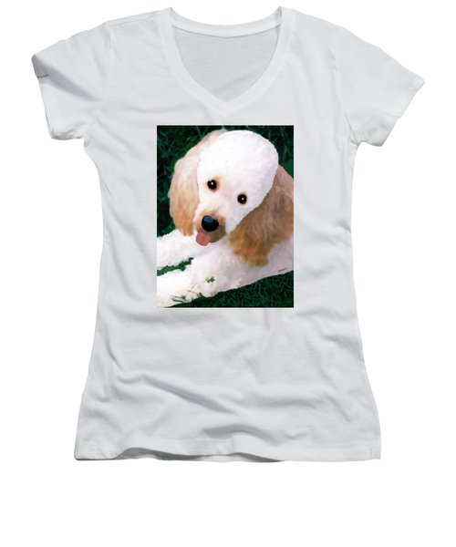 Miniature Poodle Albie Women's V-Neck (Athletic Fit)