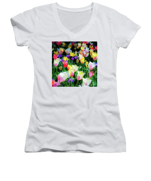Mixed Tulips In Bloom  Women's V-Neck
