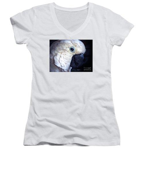 Moluccan Cockatoo Women's V-Neck T-Shirt (Junior Cut) by Melissa Messick