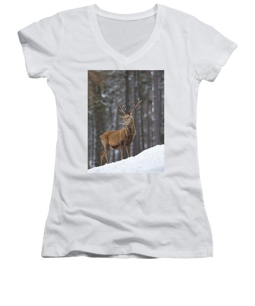 Monarch Of The Woods Women's V-Neck
