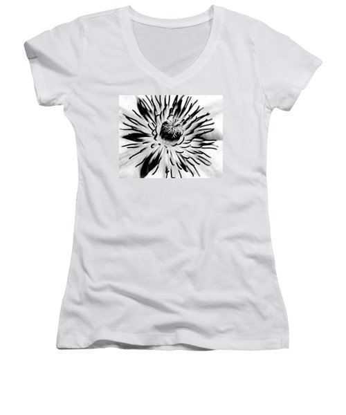Mono Clematis Women's V-Neck T-Shirt (Junior Cut) by Stephen Melia