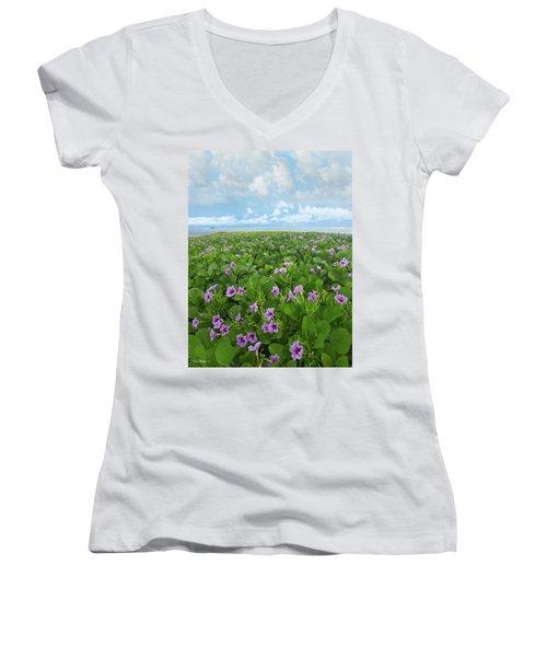 Morning Glories Women's V-Neck T-Shirt